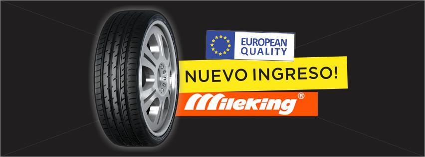 NMDP - Banner Mileking 2 - 25.01.21